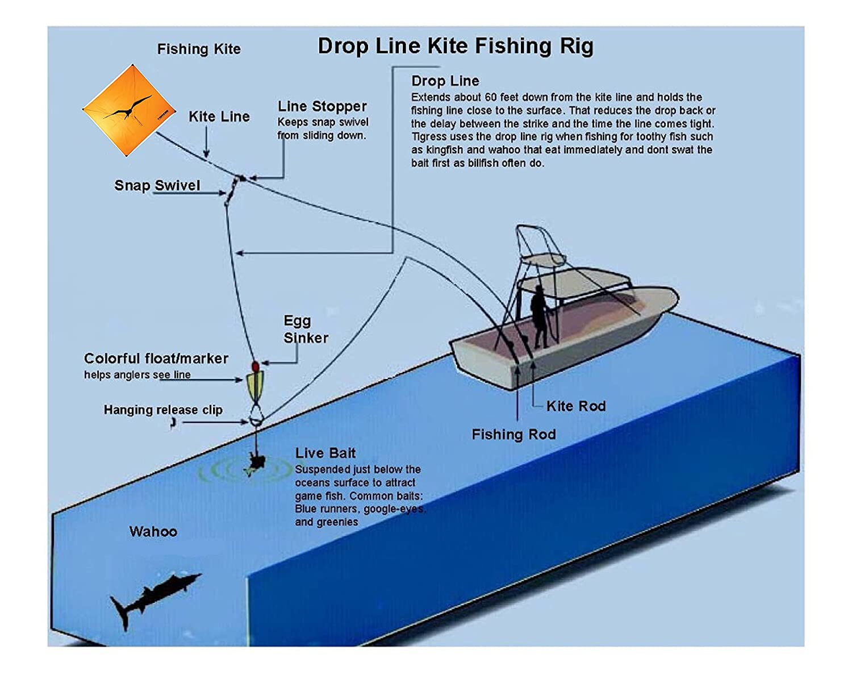 Tigress 88964 Kite Line Markers 3 Ea Large For Big Diagram Game Fishing Such As Shark Wahoo Mahi Tuna Or Sailfish Sports Outdoors