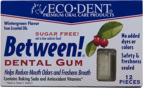 ECODENT Wintergreen Gum 12 Piece, 0.02 Pound
