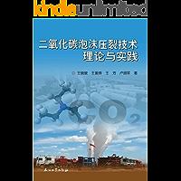二氧化碳泡沫压裂技术理论与实践
