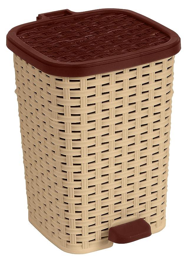 Amazon.com: 6,8 Gal. Estilo compacto basura puede de ratán ...