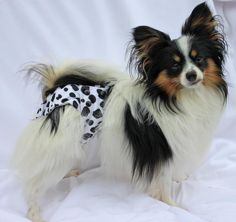 Glenndarcy Female Dog Season Nappy Knickers I Washable I Floral XL Pants and 2 Washable Pads