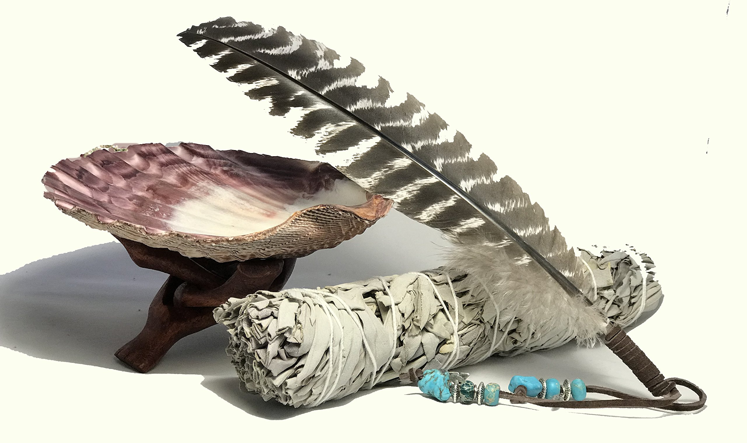 Large Beautiful Premium Lion Paw Shell, Wood Cobra Tripod Stand, Large White Sage Smudge Stick and a Hand Decorated Feather. Home Blessing and Cleansing Ritual Instructions included.