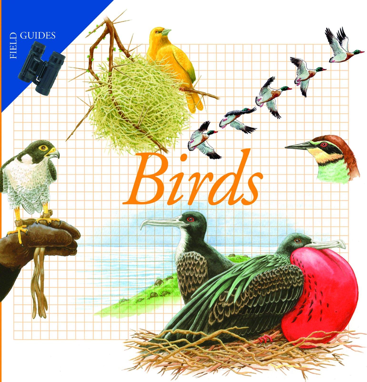 Birds (Field Guides)