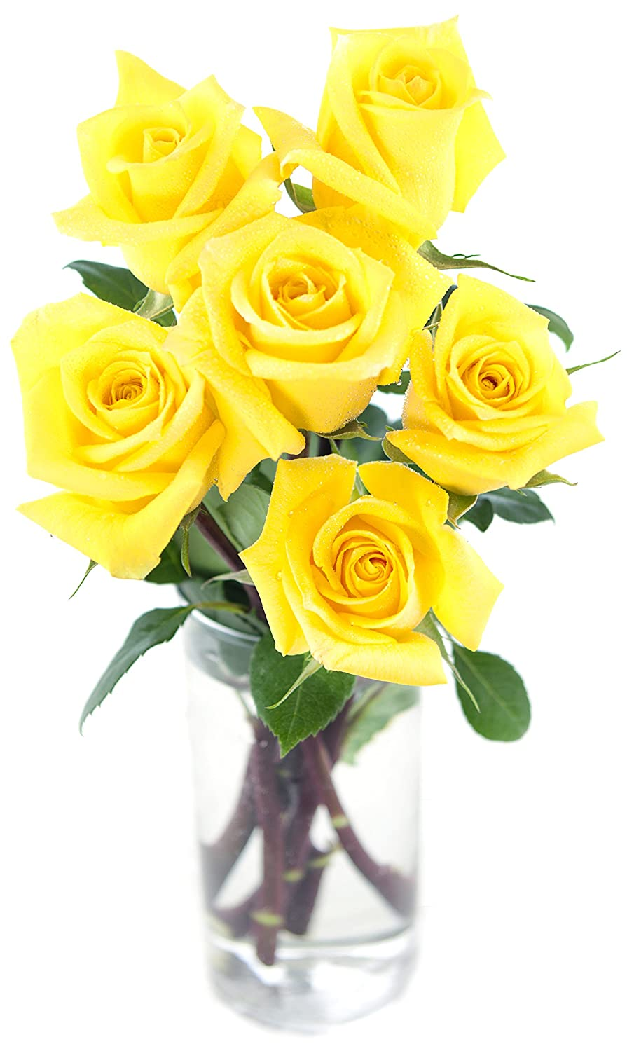 Amazon bouquet of long stemmed yellow roses half dozen amazon bouquet of long stemmed yellow roses half dozen with vase grocery gourmet food mightylinksfo