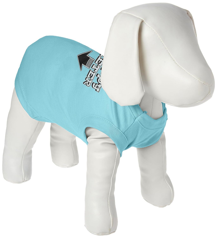 Mirage Pet Products 12-Inch Happy Meter Screen Printed Dog Shirts, Medium, Aqua