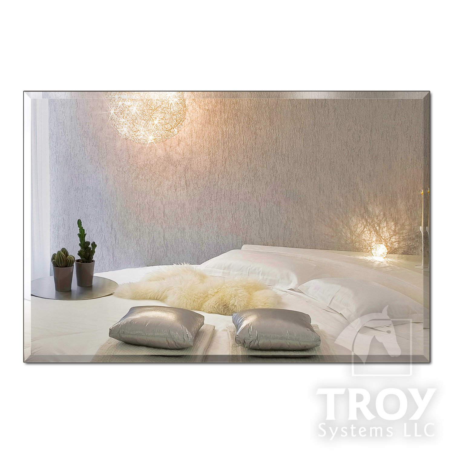 TroySys Rectangle 1/4'' Thick Beveled Polished Mirror with Hooks