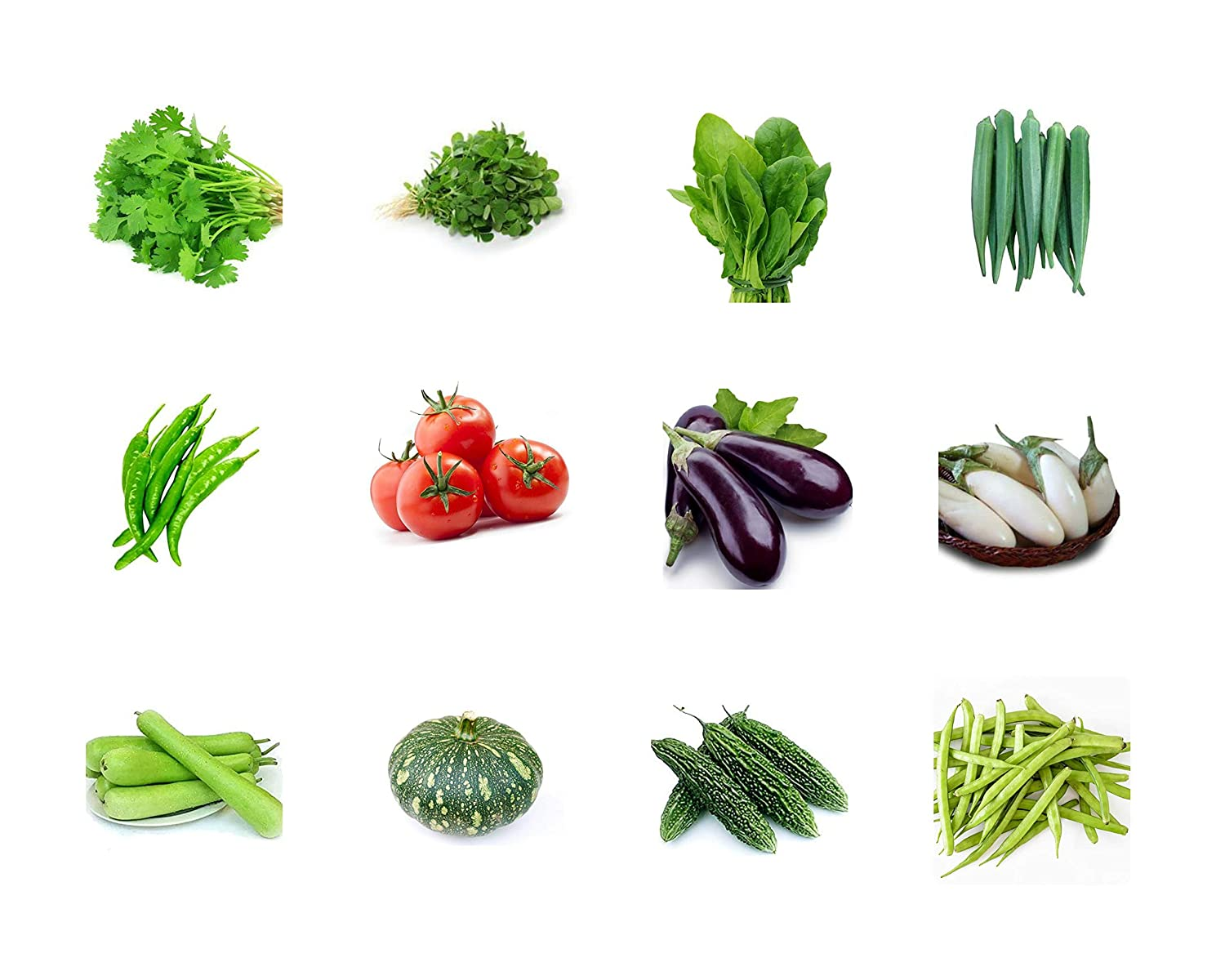 Navya Agriallied 12 Varieties Vegetable Seeds For Home And Kitchen Garden Combo Pack Seed Bank Amazon In Garden Outdoors