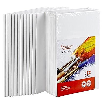 amazon com canvas panels 5 x7 super value pack artist canvas