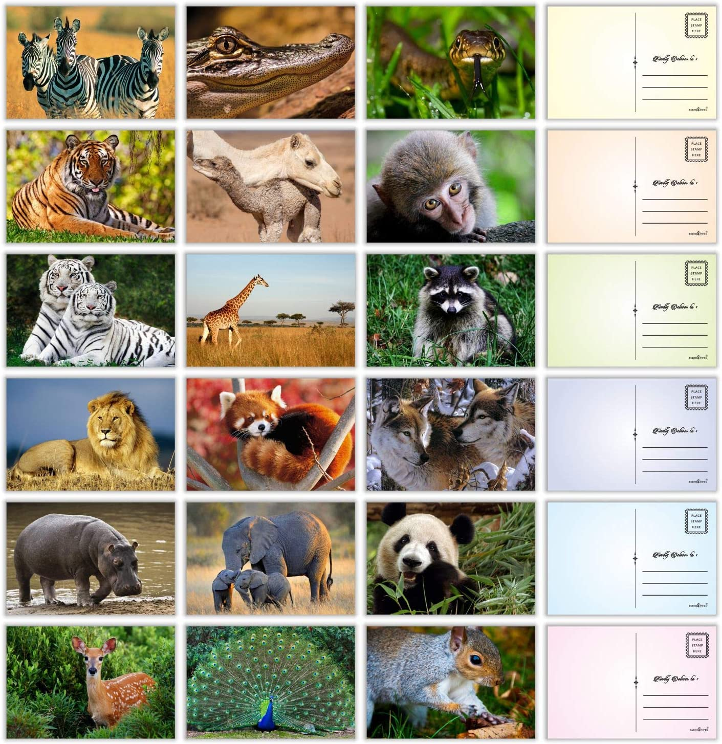 "Wild Animal Postcards - (Pack of 54) 4""x6"" Bulk Variety of Forest Jungle Safari Creatures with Mailing Side - all Occasion Cards"