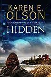 Hidden: First in a new mystery series (A Black Hat Thriller)