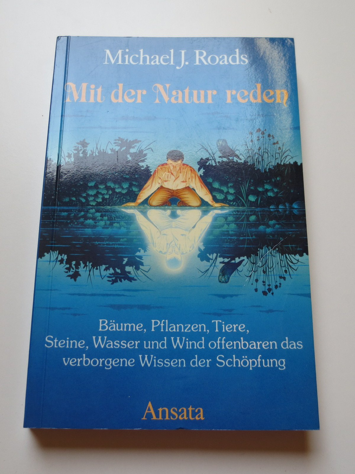 Mit der Natur reden. Bäume, Pflanzen, Tiere, Steine, Wasser und Wind offenbaren das verborgene Wissen der Schöpfung