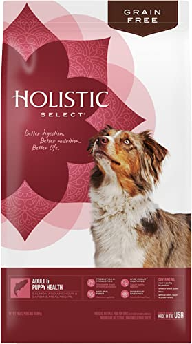 Holistic-Select-Natural-Dry-Dog-Food-Grain-Free-Adult-&-Puppy-Salmon