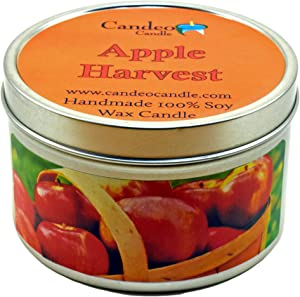 Apple Harvest, Fall Scented Soy Candle Tin (6 oz), Autumn Candles