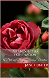 An Unexpected Honeymoon: A Pride and Prejudice Sensual Variation