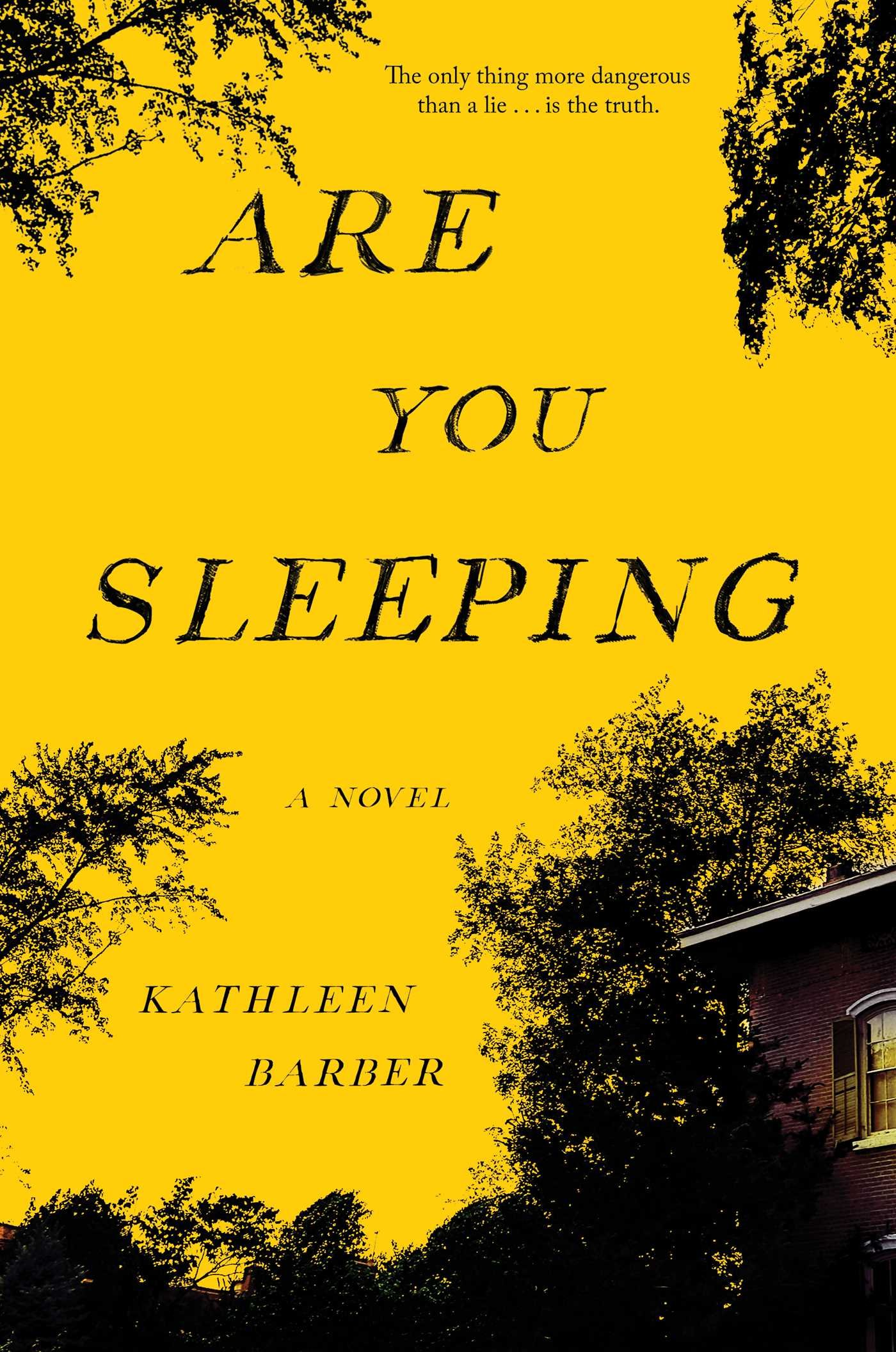 Download Are You Sleeping: A Novel PDF