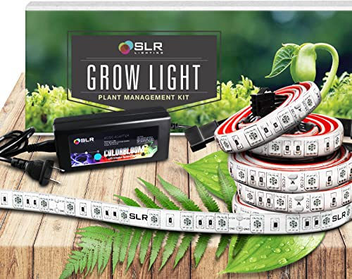 Gtmar 40 LED Grow Light for Indoor Plant, Full Spectrum Grow Light Double Head Plant Lights with Auto On Timer 10 Dimmable for Vegetable, Flowers, Fruits, Succulents, Seedlings Starting