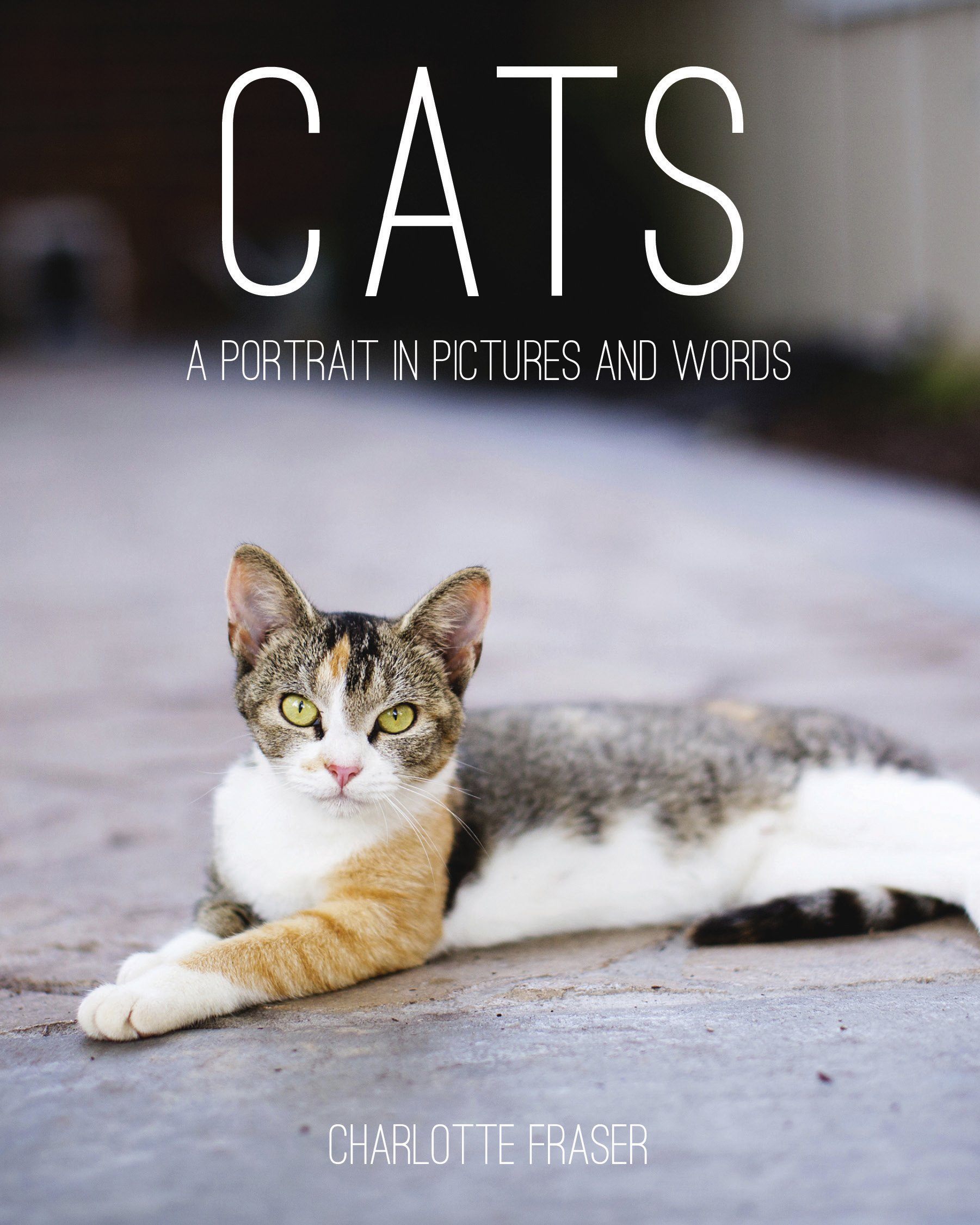 Download Cats: A Portrait in Pictures and Words pdf