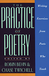 The daily poet day by day prompts for your writing practice the practice of poetry writing exercises from poets who teach fandeluxe Gallery