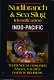 Nudibranch & Sea Slug Identification Indo-Pacific