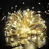 TOPLIFE イルミネーションライト 10メートル 100 LED電球 電池式 LED ライト リモコン付き 室外 装飾 結婚式 パーティー 飾り ライト 正月 クリスマス 飾り バレンタインデー 電飾 (ウォームホワイト)