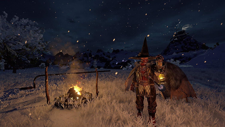 Amazon com: Outward (PS4) - PlayStation 4: Maximum Games LLC: Video