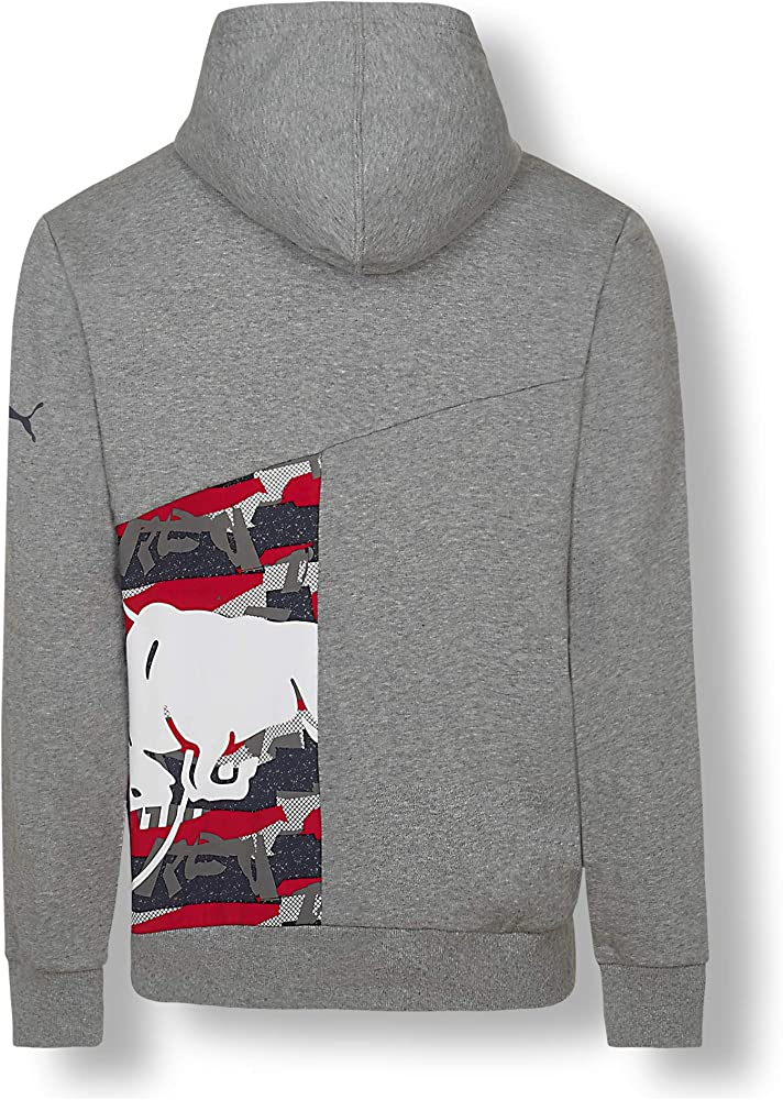 Red Bull Racing Double Bull Sudadera con Capucha, Gris Hombre ...