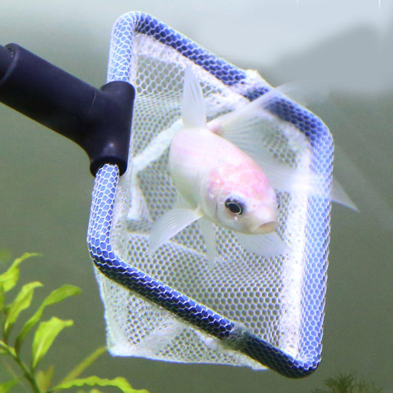 BEETEST acuario herramientas limpiador Kit peces grava red rastrillo algas raspador horquilla cilindro cepillo de limpieza: Amazon.es: Hogar