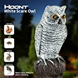 Hoont Scarecrow Realistic Owl with Flashing Eyes and Frightening Sound – Motion Activated with Multi-directional Sensors - Frightens Birds, Squirrels, Raccoons and other Pests Out of Your Property