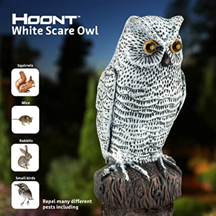 Hoont Scarecrow Realistic Owl With Flashing Eyes And Frightening Sound U2013  Motion Activated With Multi
