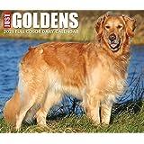 Just Goldens 2021 Box Calendar (Dog Breed Calendar)