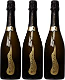 Bottega Vino Dei Poeti Prosecco 75 cl (Case of 3)