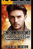 Something Borrowed, Something Boo: A Point Pleasant Holiday Novel (Point Pleasant Holiday Series Book 1)
