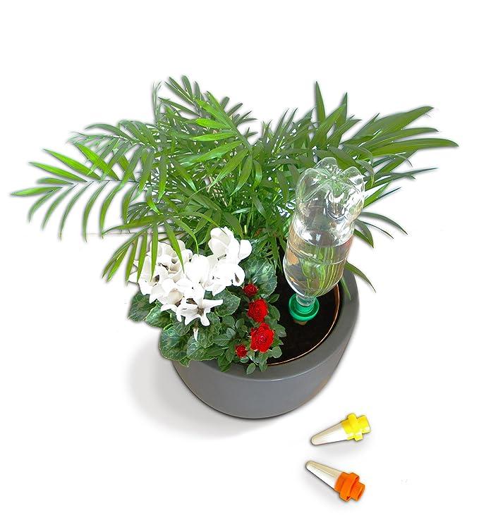 Aquasolo 10470 - Conos dosificadores de riego (para jardinería, 4 unidades): Amazon.es: Bricolaje y herramientas