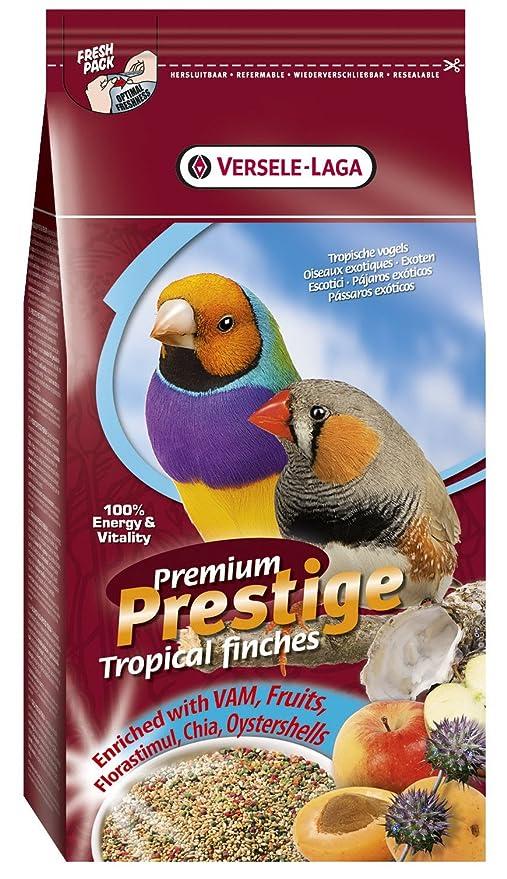 Amazon.com: Prestige Versele-laga Tropical Finches - Mezcla ...