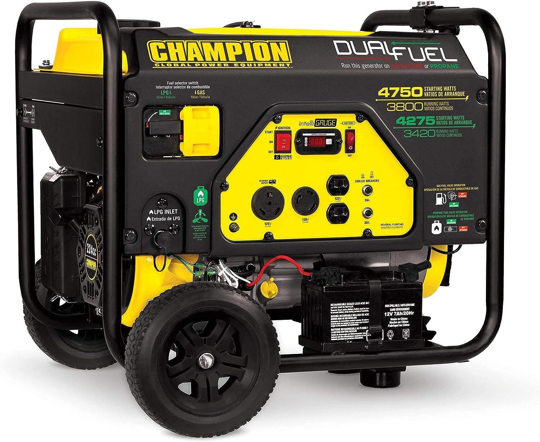 10. Champion 3800-Watt Dual Fuel RV Ready Portable Generator