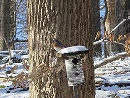 Amazon.com : Bluebird house - Gilbertson PVC & cedar bird