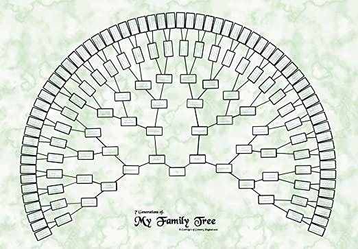 Godridges Of Coventry Family Tree Chart - 7 Generation Fan Design