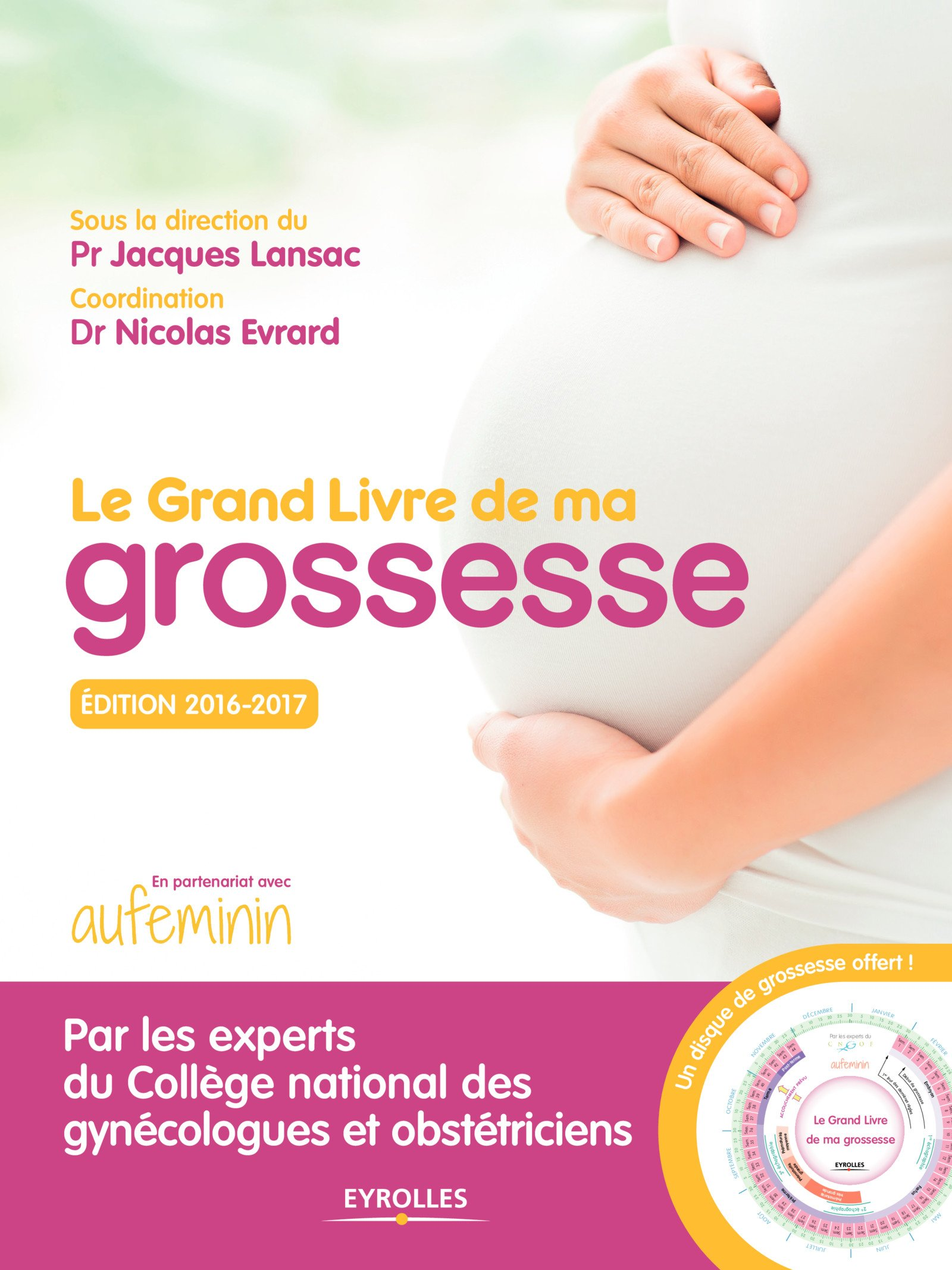 Le Grand Livre De Ma Grossesse 9782212563399 Amazon Com Books