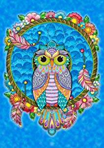 Toland Home Garden 1112122 Dreamcatcher Owl 12.5 x 18 Inch Decorative, Garden Flag (12.5