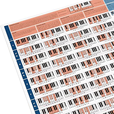 Póster Útil para Pianistas - Lámina con Acordes de Piano - Aprender Piano - Tabla con Acordes de Piano y Escalas - Teoría de Piano para Principiantes ...