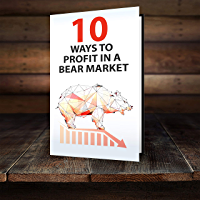 10 WAYS TO PROFIT IN A BEAR MARKET (English Edition)