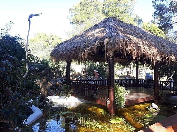 Nature de lounge24 Zostera techo 150 x 80 cm – Natural techo Completo de juncos Hierba: Amazon.es: Jardín