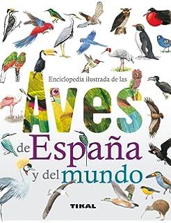 Aves de España: GUIA DE CAMPO AVES DE ESPAÑA Y EUROPA 🦅 GUIAS DEL NATURALISTA-AVES / Libro De Aves Españolas y Europeas Con Fotos a Color: Amazon.es: Miagua, Alexander: Libros