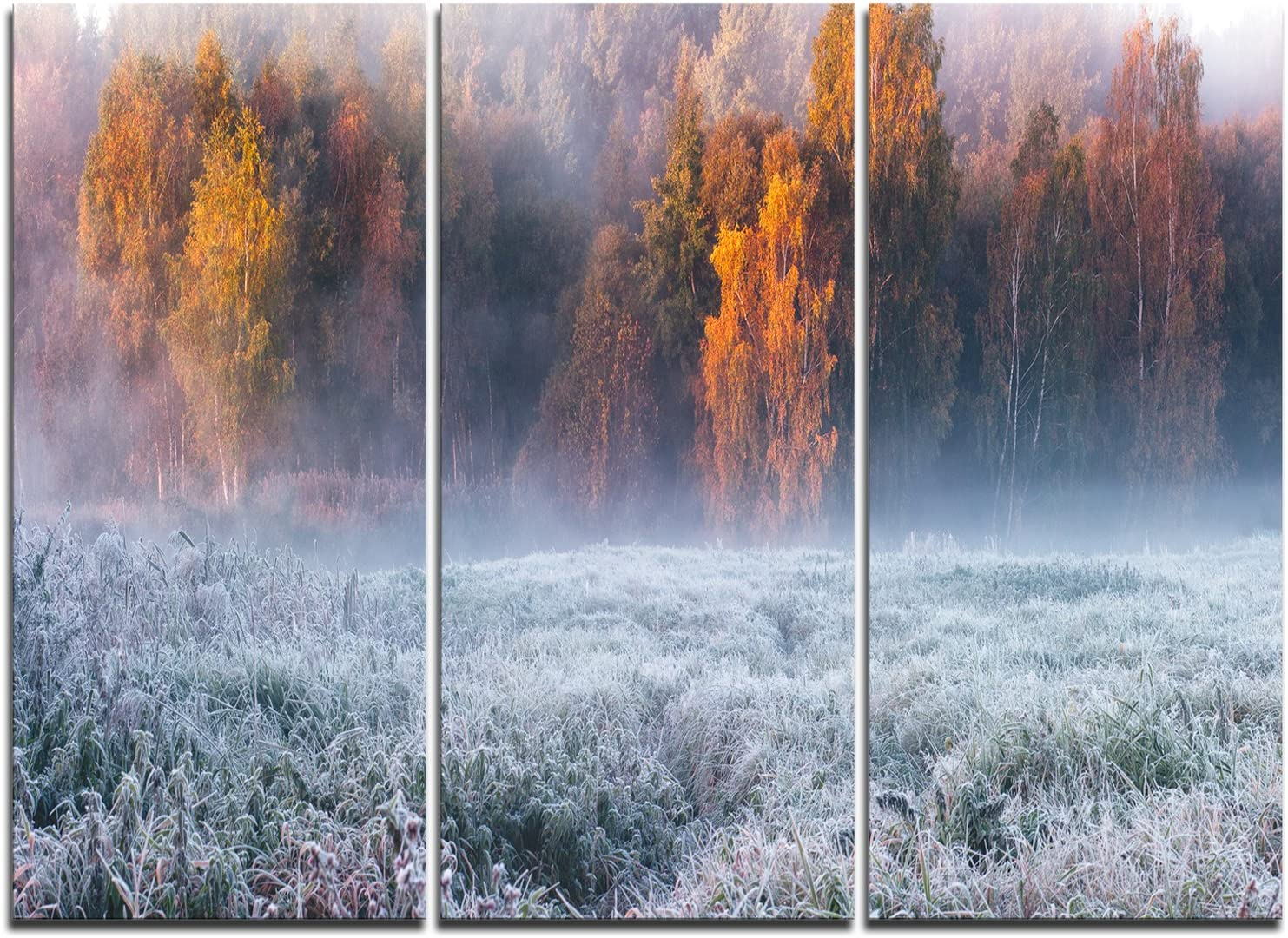 Artdesign Design Art Grey Hoarfrost Design By Winter Landscape Print Wall Artwork 36x28in Multipanel 3 Piece White 36x28 3 Panels Amazon Co Uk Kitchen Home