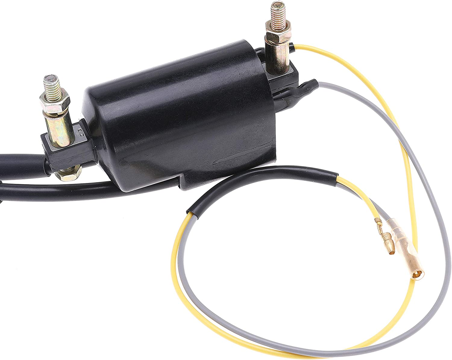 Ignition Parts 2 Pack Dual Lead Wire Ignition Coil 12V for Honda ...