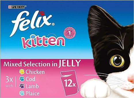 Felix Bolsitas de gelatina para gatos 48 bolsas: Amazon.es ...