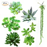 Luyue Artificial Succulent Plants 6 Pcs Mixed Unpotted Fake Green Stems for DIY Home Garden Wall Decor Flower Arrangement
