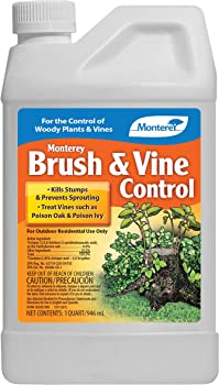 MONTEREY 0.25 Gallon Post-Emergent Weed And Brush Killer