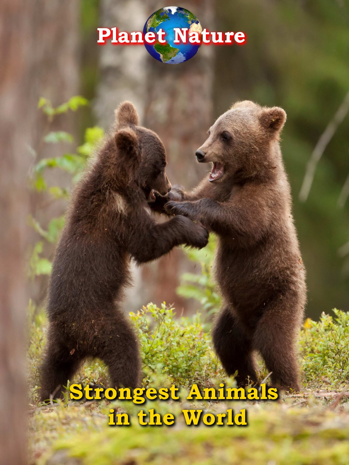 Amazon com: Watch Strongest Animals in the World | Prime Video