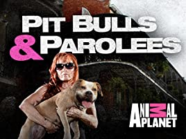 Amazon com: Watch Pit Bulls & Parolees Season 8   Prime Video